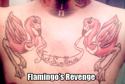 Don't fuck with the vengeful flamingos.