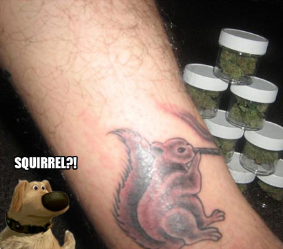 High as a Squirrel?
